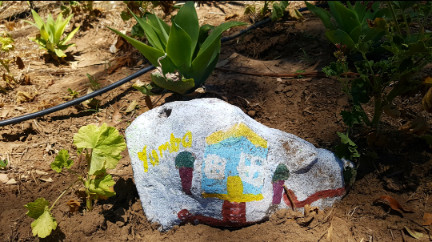 Gunggari - Rock painted by children - Yumba - 23 March 2018